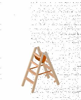 Layher Holzstehleiter mit Stufen 1020